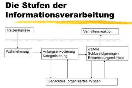 Stufen von Informationsverarbeitung